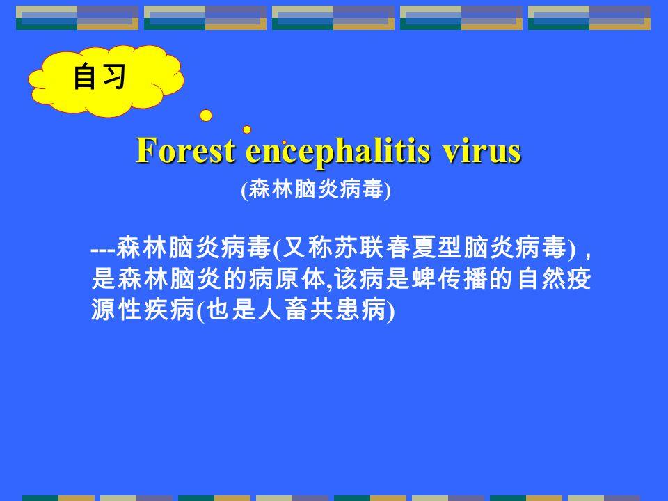 --- 森林脑炎病毒 ( 又称苏联春夏型脑炎病毒 ) , 是森林脑炎的病原体, 该病是蜱传播的自然疫 源性疾病 ( 也是人畜共患病 ) Forest encephalitis virus ( 森林脑炎病毒 ) 自习