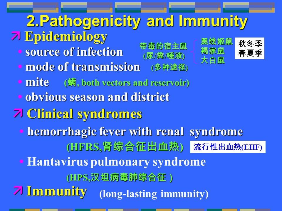 2.Pathogenicity and Immunity  Epidemiology source of infection source of infection mode of transmission mode of transmission mite mite obvious season and district obvious season and district  Clinical syndromes hemorrhagic fever with renal syndrome hemorrhagic fever with renal syndrome (HFRS, 肾综合征出血热 ) (HFRS, 肾综合征出血热 ) Hantavirus pulmonary syndrome (HPS, 汉坦病毒肺综合征) ( 螨, both vectors and reservoir) 带毒的宿主鼠 ( 尿 / 粪 / 唾液 ) ( 尿 / 粪 / 唾液 ) 黑线姬鼠褐家鼠大白鼠 ( 多种途径 ) 秋冬季 春夏季 流行性出血热 (EHF)  Immunity (long-lasting immunity)