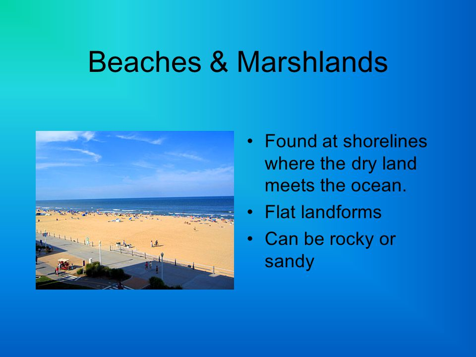 Beaches & Marshlands Found at shorelines where the dry land meets the ocean. Flat landforms Can be rocky or sandy
