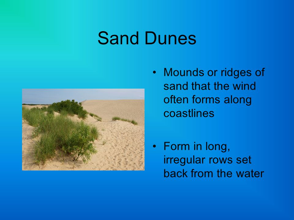 Sand Dunes Mounds or ridges of sand that the wind often forms along coastlines Form in long, irregular rows set back from the water
