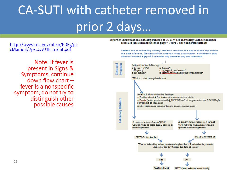 CA-SUTI with catheter removed in prior 2 days… http://www.cdc.gov/nhsn/PDFs/ps cManual/7pscCAUTIcurrent.pdf Note: If fever is present in Signs & Symptoms, continue down flow chart – fever is a nonspecific symptom; do not try to distinguish other possible causes 28