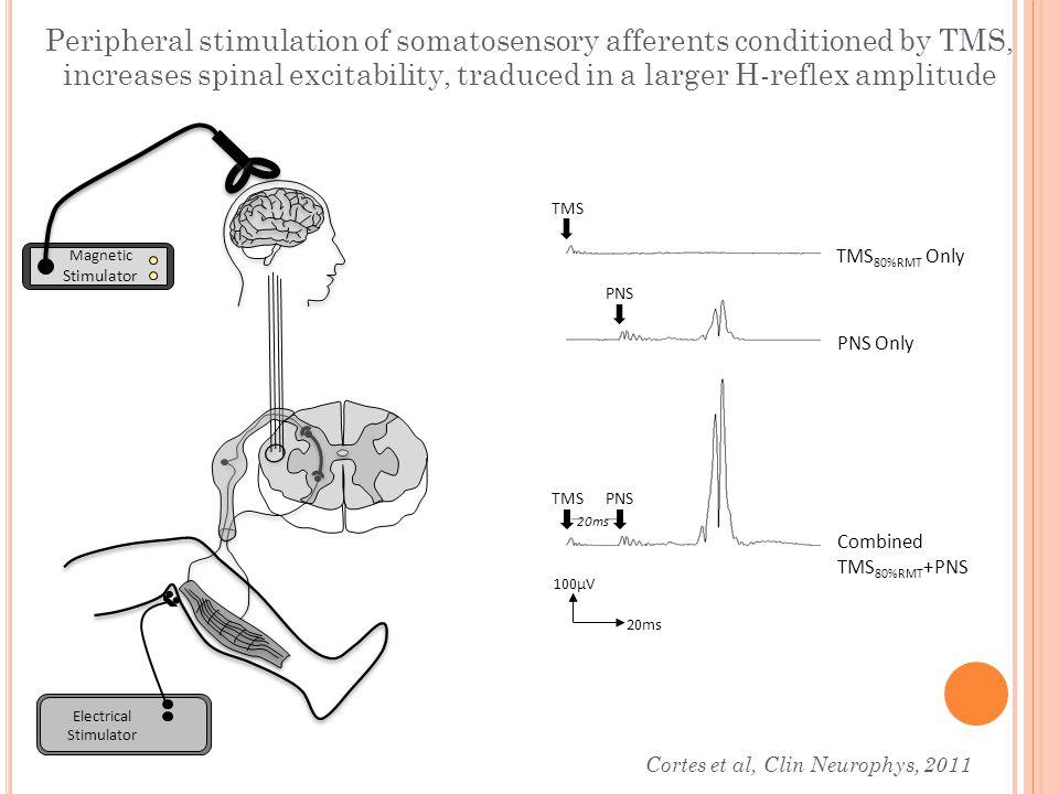 100μV 20ms TMS 80%RMT Only PNS Only Combined TMS 80%RMT +PNS TMS PNS 20ms Electrical Stimulator Magnetic Stimulator Peripheral stimulation of somatose
