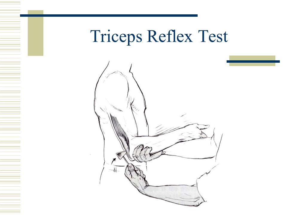 Triceps Reflex Test