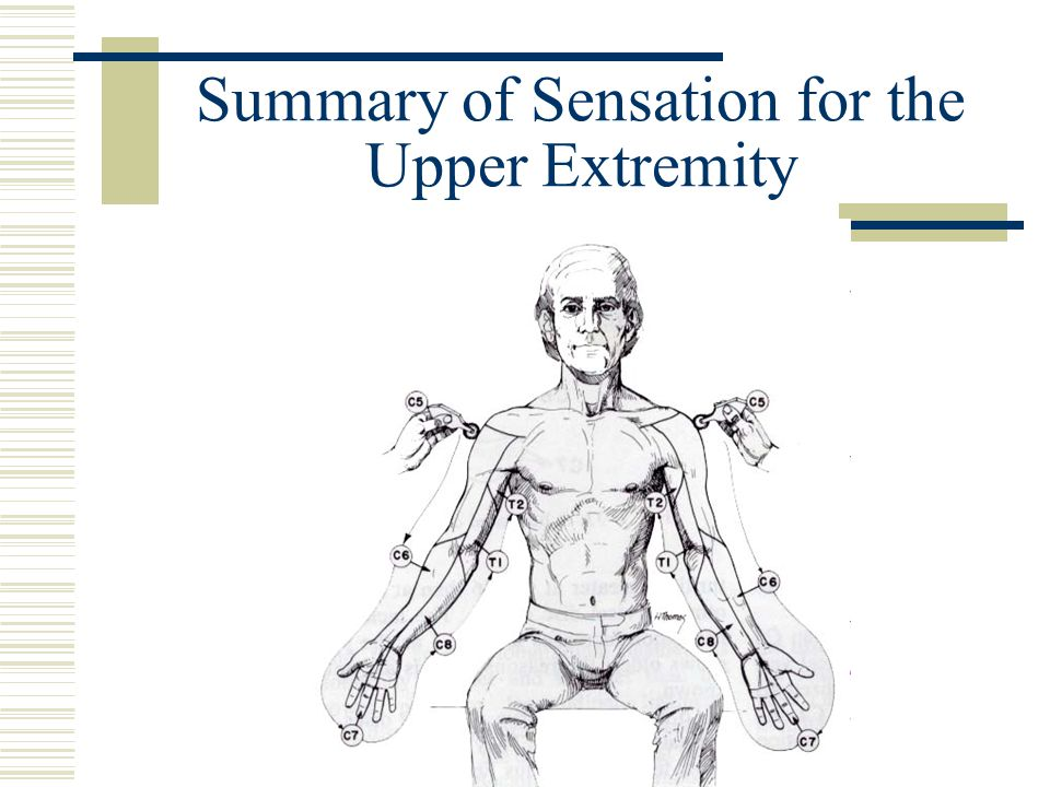 Summary of Sensation for the Upper Extremity