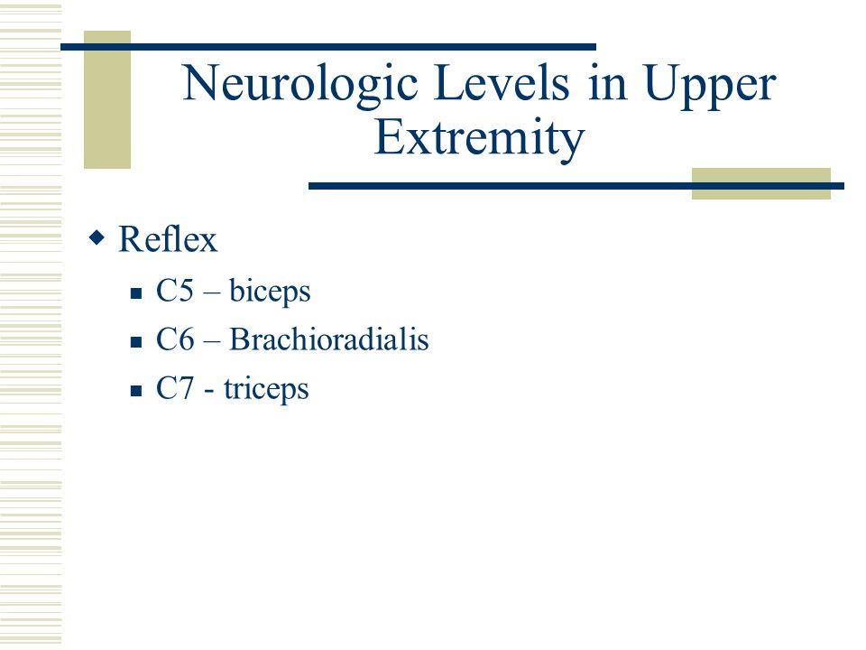 Neurologic Levels in Upper Extremity  Reflex C5 – biceps C6 – Brachioradialis C7 - triceps