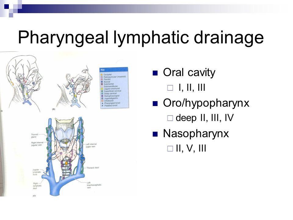 Pharyngeal lymphatic drainage Oral cavity  I, II, III Oro/hypopharynx  deep II, III, IV Nasopharynx  II, V, III
