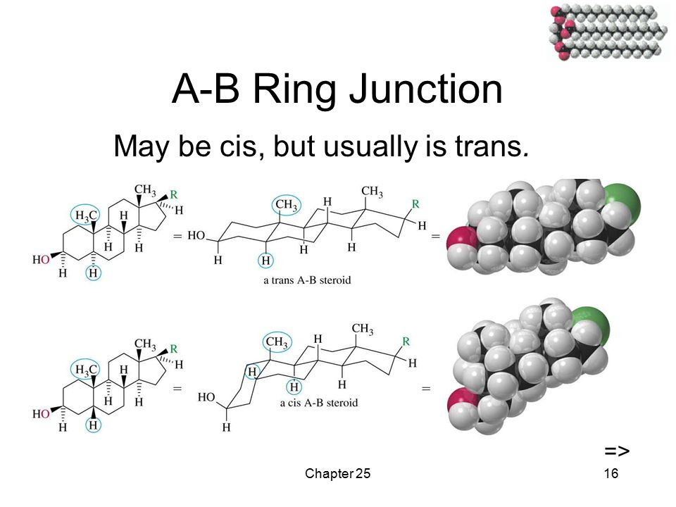 Chapter 2516 A-B Ring Junction May be cis, but usually is trans. =>