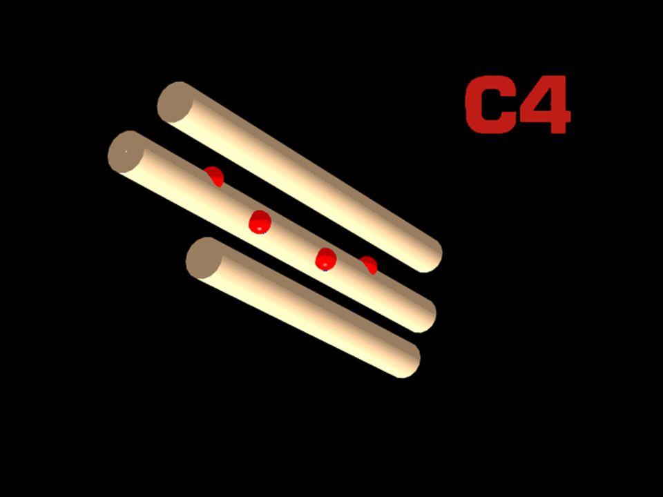 31 4/14/2015 C4 disulfides