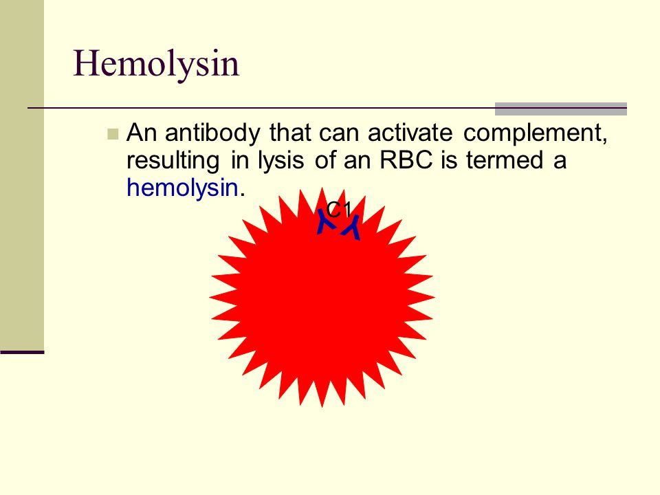 Hemolysin An antibody that can activate complement, resulting in lysis of an RBC is termed a hemolysin.