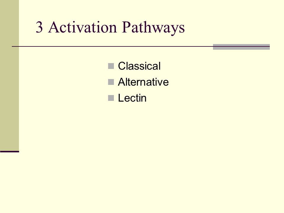 3 Activation Pathways Classical Alternative Lectin
