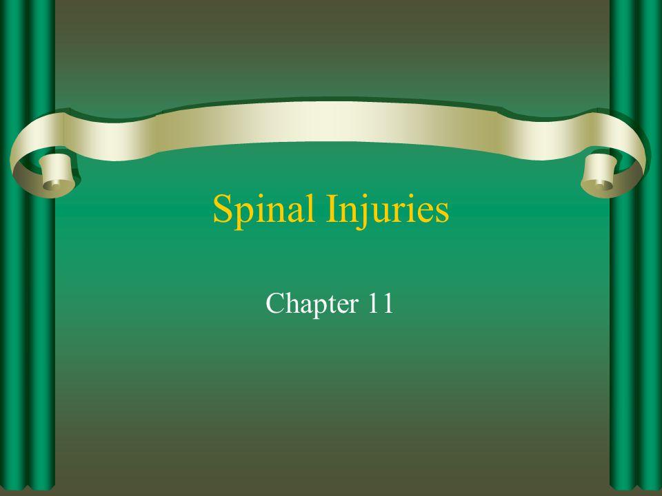 Anatomy of the Spine Cervical Vertebrae – : A1 Thoracic Vertebrae – : A2 Lumbar Vertebrae – : A3 Sacrum – : A4 Coccyx – : A5
