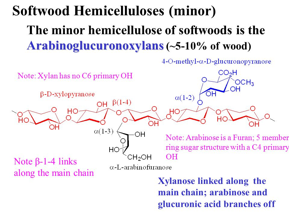 Softwood Hemicelluloses (minor) rabinoglucuronoxylans The minor hemicellulose of softwoods is the Arabinoglucuronoxylans (~5-10% of wood) Xylanose lin