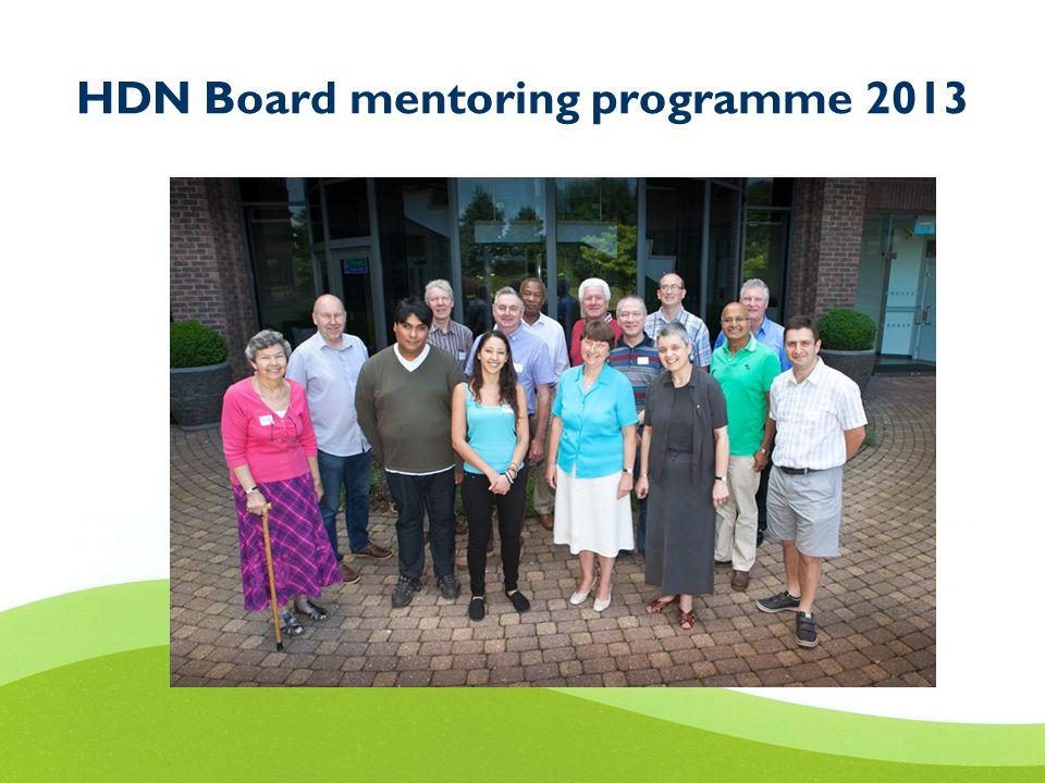 HDN Board mentoring programme 2013