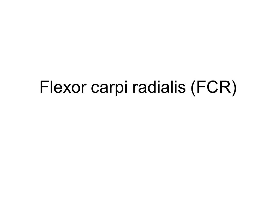 Flexor compartment of the forearm: Superficial layer Attachments: Proximal: medial epicondyle of humerus Distal: base of 2 nd metacarpal Action: flex + RD wrist jt.