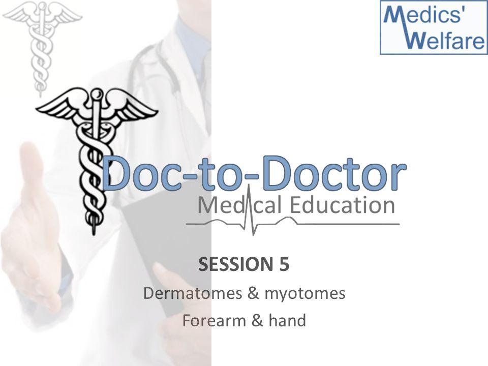 SESSION 5 Dermatomes & myotomes Forearm & hand