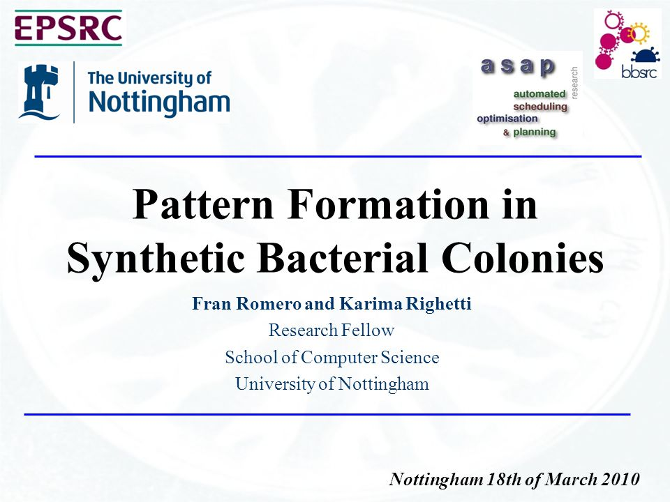 Pattern Formation in Synthetic Bacterial Colonies Fran Romero and Karima Righetti Research Fellow School of Computer Science University of Nottingham Nottingham 18th of March 2010