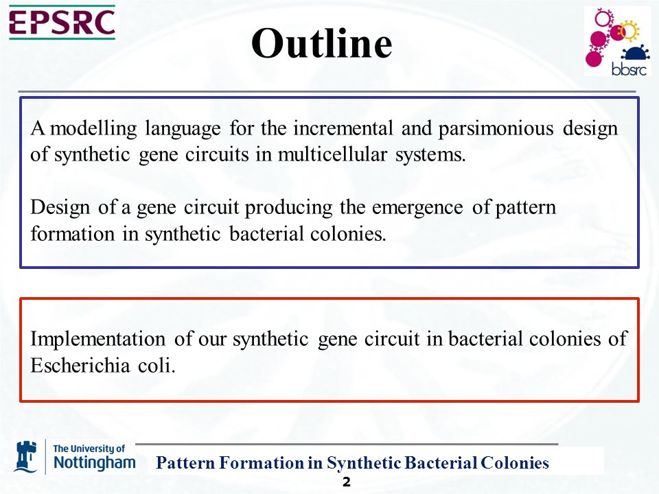 A P System Modelling Framework for Systems and Synthetic Biology 2 Outline A modelling language for the incremental and parsimonious design of synthetic gene circuits in multicellular systems.