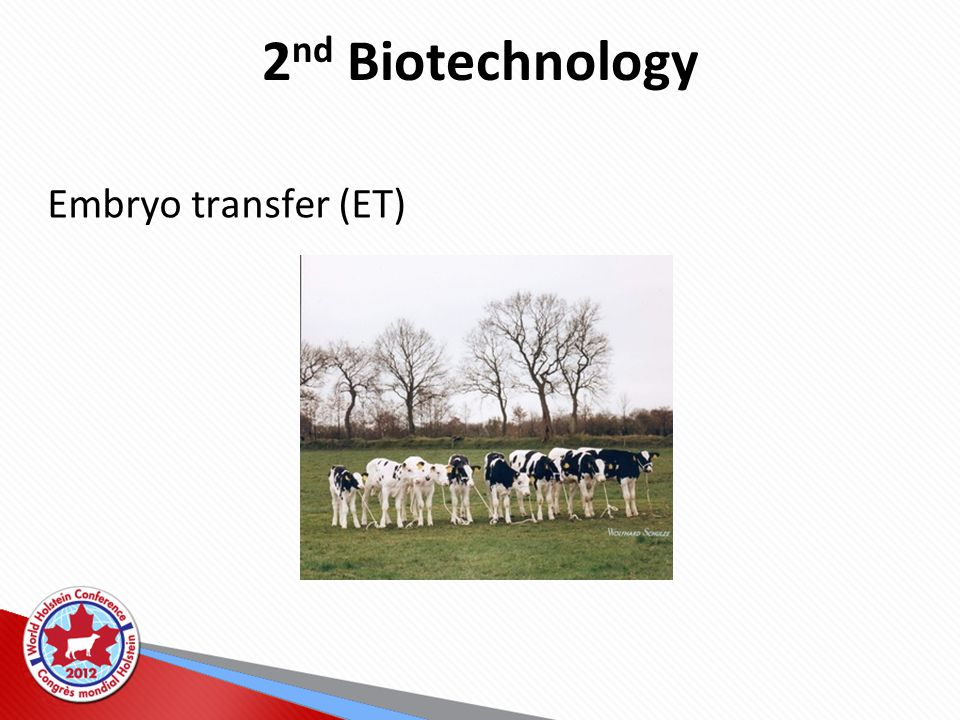 Embryo transfer (ET) 2 nd Biotechnology