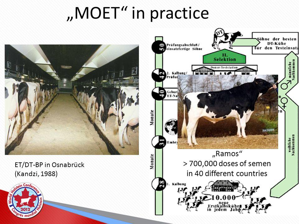 "ET/DT-BP in Osnabrück (Kandzi, 1988) ""MOET in practice ""Ramos > 700,000 doses of semen in 40 different countries"