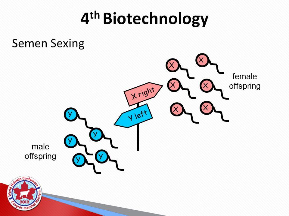 4 th Biotechnology Semen Sexing Y Y Y Y Y X X X X X X X right Y left female offspring male offspring