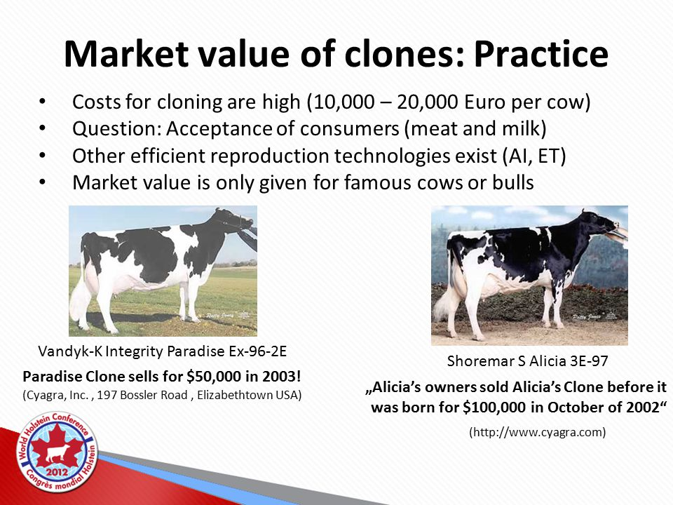Market value of clones: Practice Costs for cloning are high (10,000 – 20,000 Euro per cow) Question: Acceptance of consumers (meat and milk) Other efficient reproduction technologies exist (AI, ET) Market value is only given for famous cows or bulls Vandyk-K Integrity Paradise Ex-96-2E Paradise Clone sells for $50,000 in 2003.