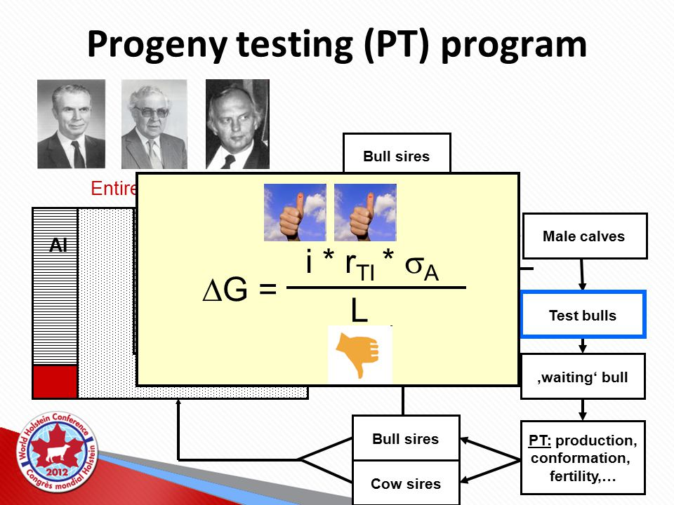 Progeny testing (PT) program Entire population PT: production, conformation, fertility,… Bull sires Cow sires milk recording herdbook AI Bull dams Bull sires Random mating design Test bulls 'waiting' bull Male calves  G = i * r TI *  A L