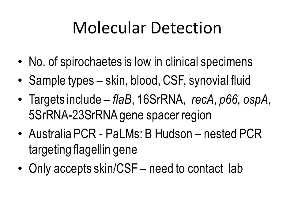 Molecular Detection No. of spirochaetes is low in clinical specimens Sample types – skin, blood, CSF, synovial fluid Targets include – flaB, 16SrRNA,