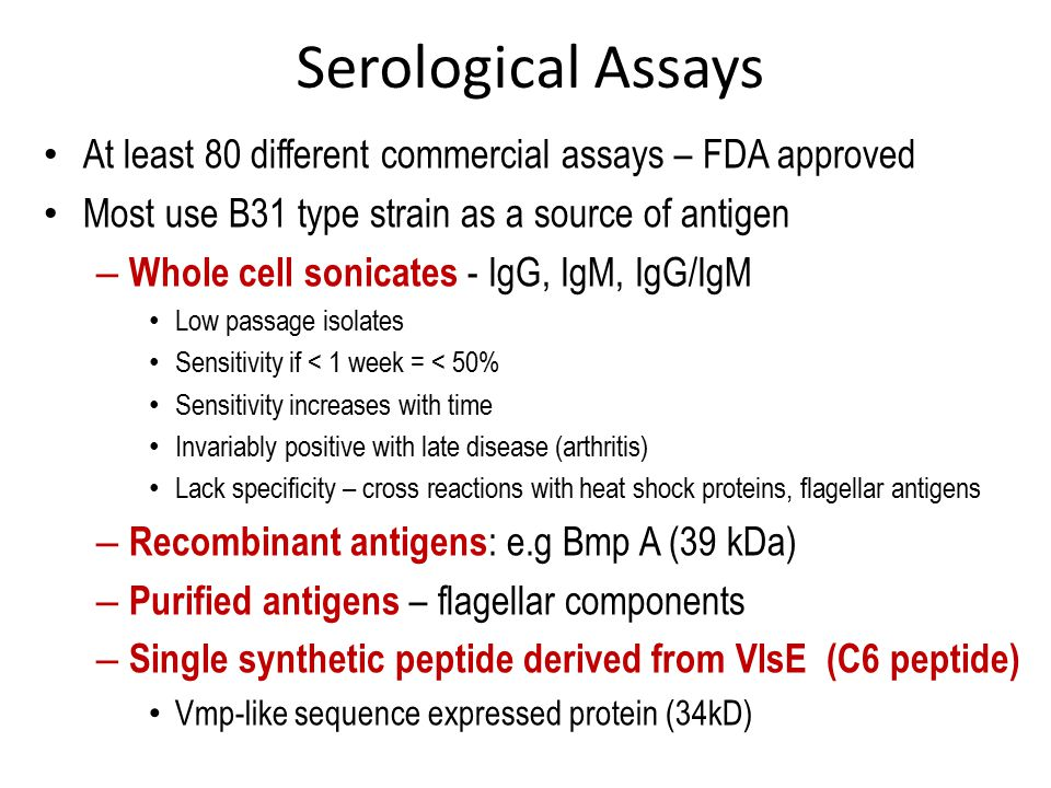 Serological Assays At least 80 different commercial assays – FDA approved Most use B31 type strain as a source of antigen – Whole cell sonicates - IgG, IgM, IgG/IgM Low passage isolates Sensitivity if < 1 week = < 50% Sensitivity increases with time Invariably positive with late disease (arthritis) Lack specificity – cross reactions with heat shock proteins, flagellar antigens – Recombinant antigens : e.g Bmp A (39 kDa) – Purified antigens – flagellar components – Single synthetic peptide derived from VlsE (C6 peptide) Vmp-like sequence expressed protein (34kD)