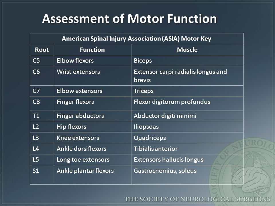 Assessment of Motor Function American Spinal Injury Association (ASIA) Motor Key RootFunctionMuscle C5Elbow flexorsBiceps C6Wrist extensorsExtensor ca