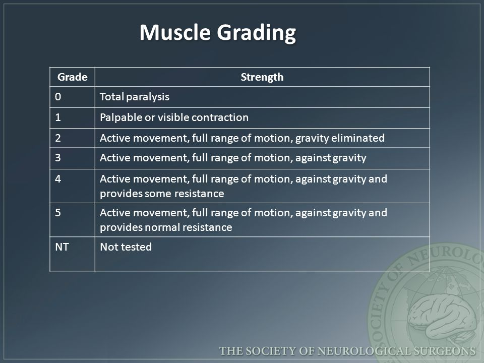 Muscle Grading - :.