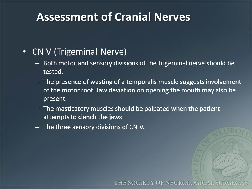 Assessment of Cranial Nerves CN V (Trigeminal Nerve) – Both motor and sensory divisions of the trigeminal nerve should be tested.
