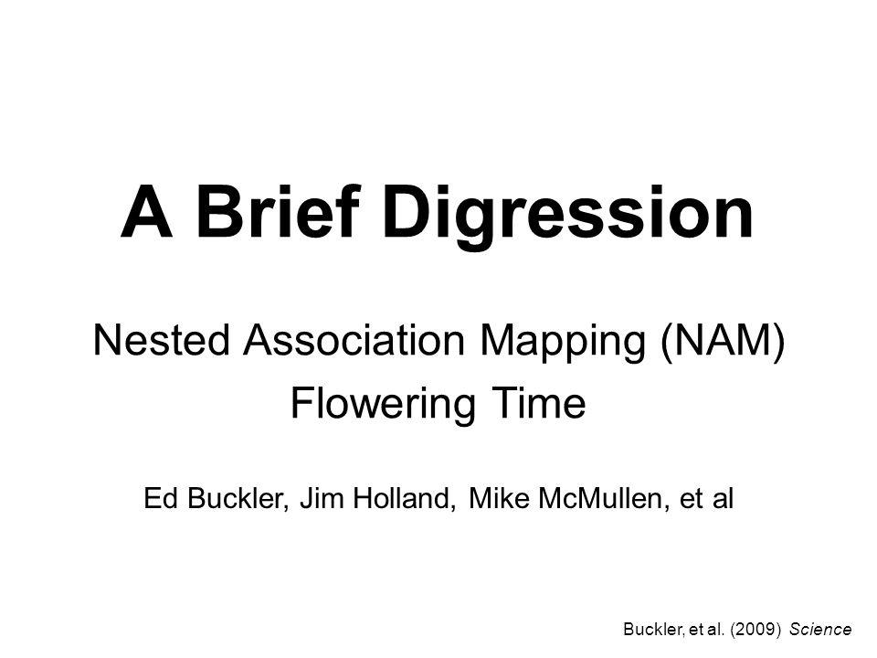 A Brief Digression Nested Association Mapping (NAM) Flowering Time Ed Buckler, Jim Holland, Mike McMullen, et al Buckler, et al.