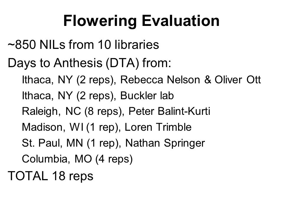 Flowering Evaluation ~850 NILs from 10 libraries Days to Anthesis (DTA) from: Ithaca, NY (2 reps), Rebecca Nelson & Oliver Ott Ithaca, NY (2 reps), Bu