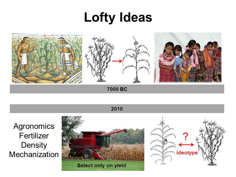 Lofty Ideas 2010 Agronomics Fertilizer Density Mechanization .