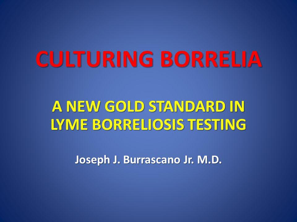 CULTURING BORRELIA A NEW GOLD STANDARD IN LYME BORRELIOSIS TESTING Joseph J. Burrascano Jr. M.D.