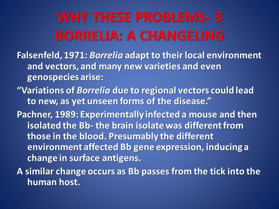 WHY THESE PROBLEMS- 3 BORRELIA: A CHANGELING Falsenfeld, 1971: Borrelia adapt to their local environment and vectors, and many new varieties and even