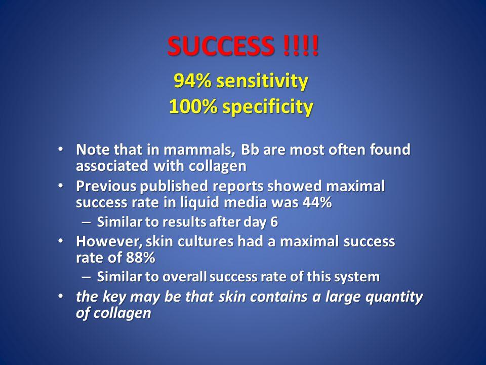 SUCCESS !!!.