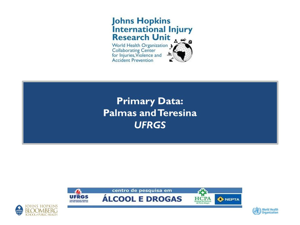 Primary Data: Palmas and Teresina UFRGS