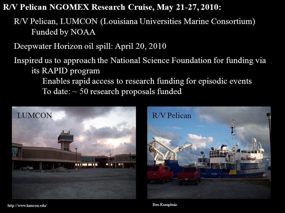 R/V Pelican NGOMEX Research Cruise, May 21-27, 2010: R/V Pelican, LUMCON (Louisiana Universities Marine Consortium) Funded by NOAA Deepwater Horizon oil spill: April 20, 2010 Inspired us to approach the National Science Foundation for funding via its RAPID program Enables rapid access to research funding for episodic events To date: ~ 50 research proposals funded http://www.lumcon.edu/ Ben Kamphuis LUMCONR/V Pelican
