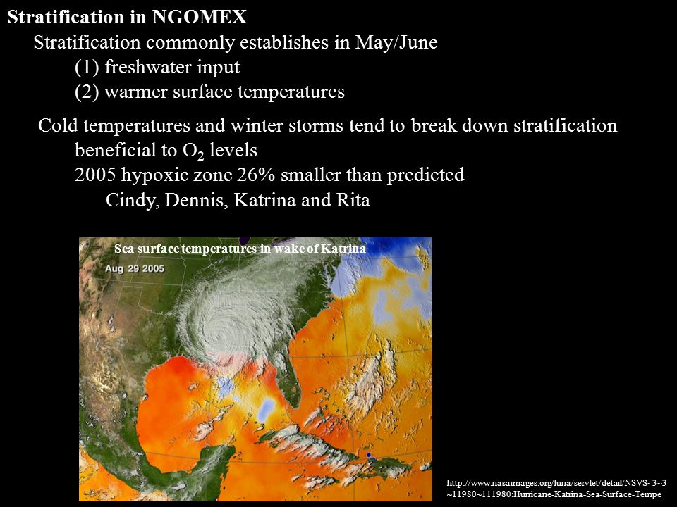 Stratification in NGOMEX Stratification commonly establishes in May/June (1) freshwater input (2) warmer surface temperatures Cold temperatures and winter storms tend to break down stratification beneficial to O 2 levels 2005 hypoxic zone 26% smaller than predicted Cindy, Dennis, Katrina and Rita http://www.nasaimages.org/luna/servlet/detail/NSVS~3~3 ~11980~111980:Hurricane-Katrina-Sea-Surface-Tempe Sea surface temperatures in wake of Katrina