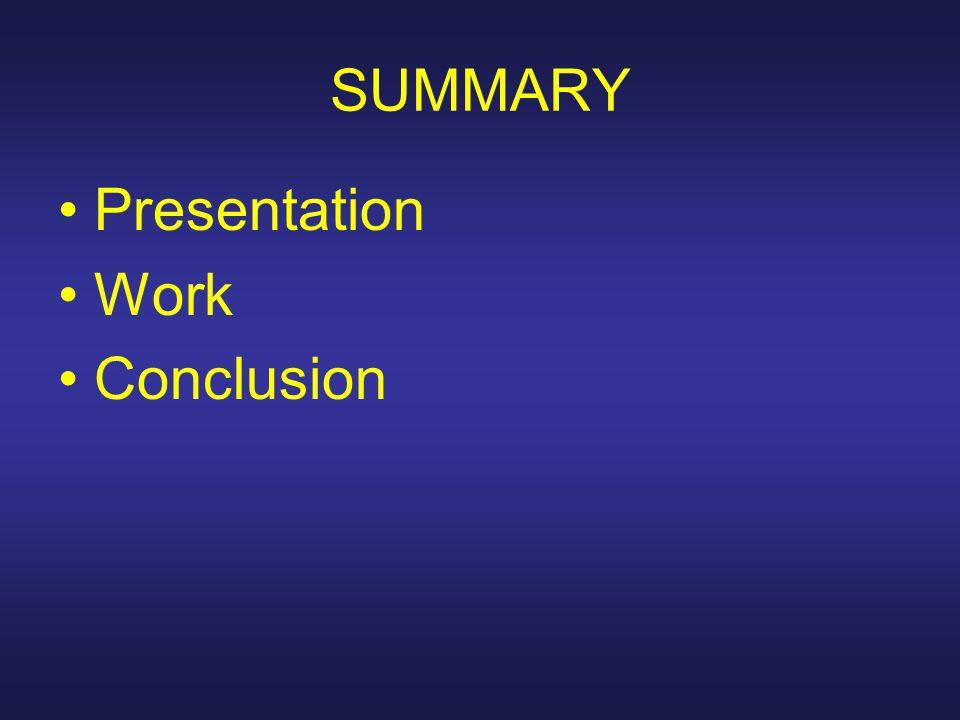 SUMMARY Presentation Work Conclusion