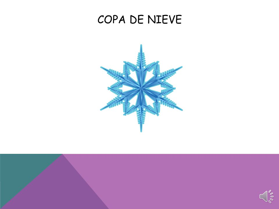 COPA DE NIEVE
