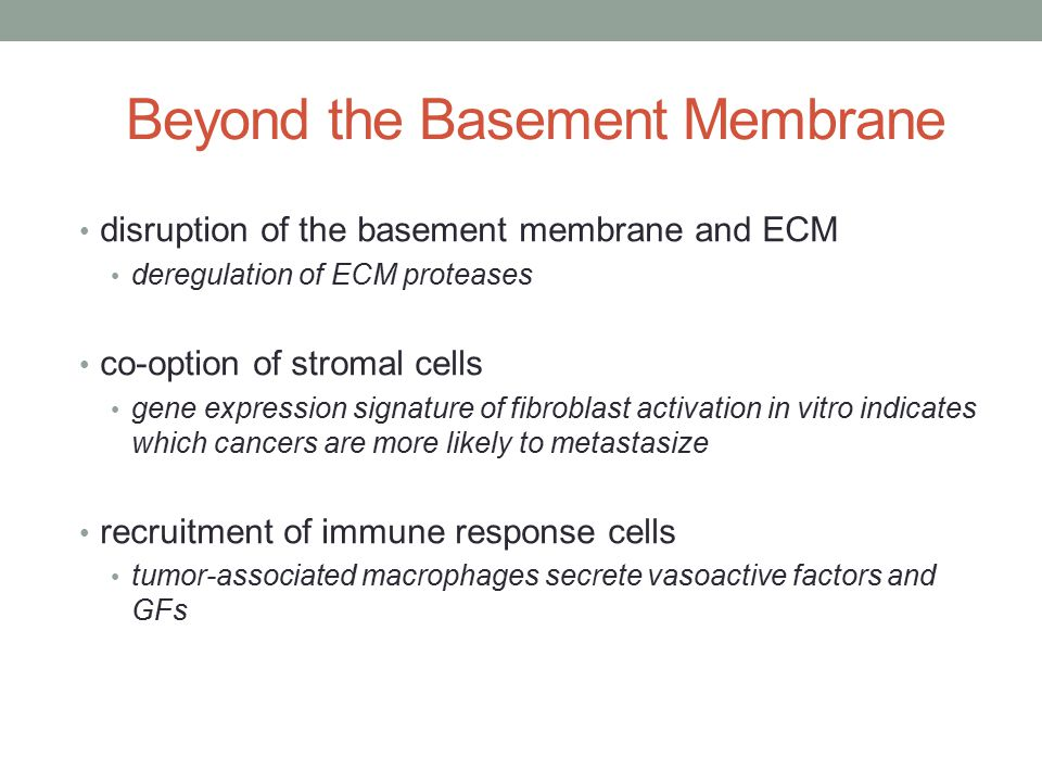 Beyond the Basement Membrane disruption of the basement membrane and ECM deregulation of ECM proteases co-option of stromal cells gene expression signature of fibroblast activation in vitro indicates which cancers are more likely to metastasize recruitment of immune response cells tumor-associated macrophages secrete vasoactive factors and GFs