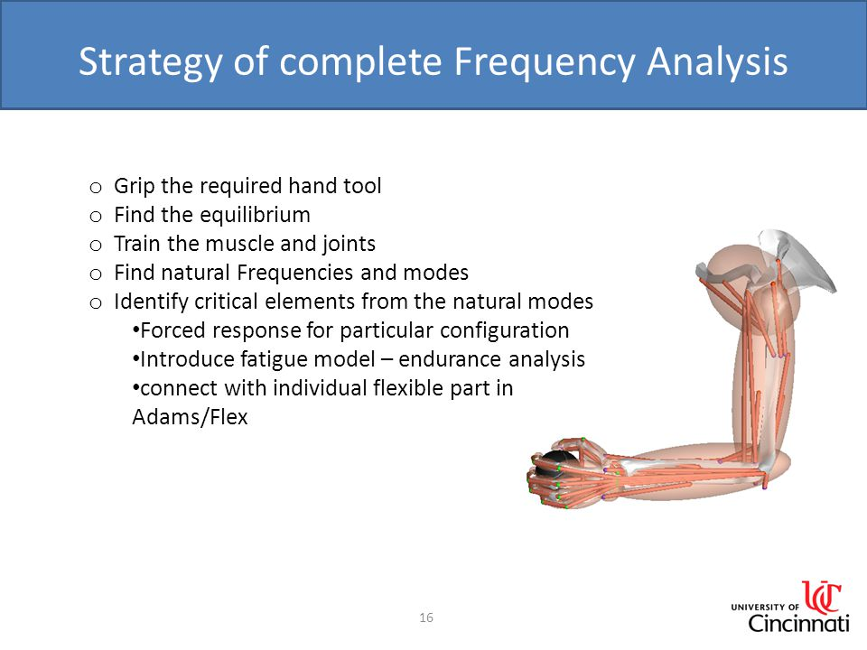 Strategy of complete Frequency Analysis 16 o Grip the required hand tool o Find the equilibrium o Train the muscle and joints o Find natural Frequencies and modes o Identify critical elements from the natural modes Forced response for particular configuration Introduce fatigue model – endurance analysis connect with individual flexible part in Adams/Flex