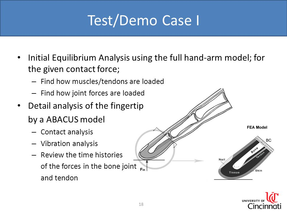 Test/Demo Case I Initial Equilibrium Analysis using the full hand-arm model; for the given contact force; – Find how muscles/tendons are loaded – Find