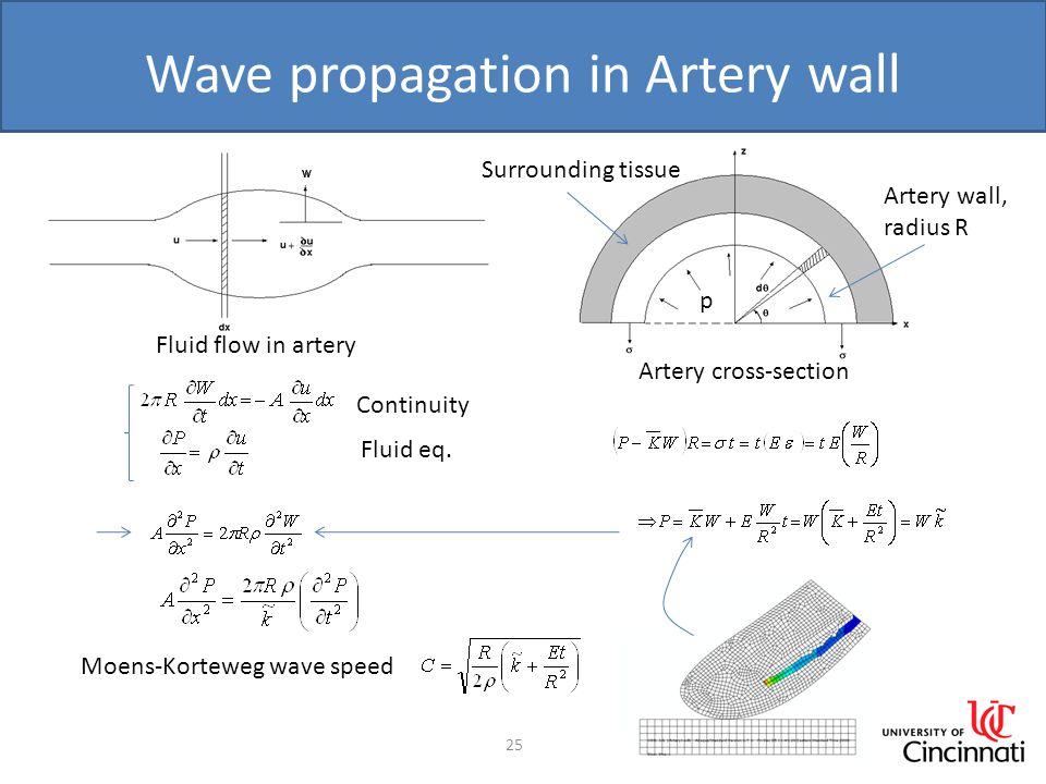 Wave propagation in Artery wall 25 Moens-Korteweg wave speed Fluid flow in artery Continuity Fluid eq.