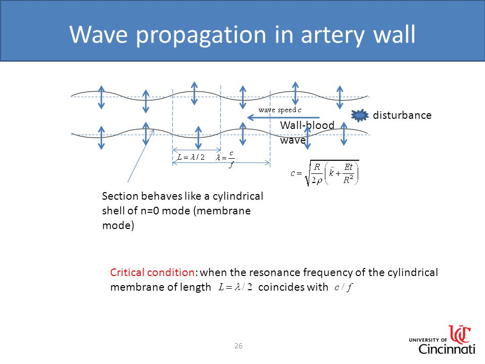 Wave propagation in artery wall 26 Wall-blood wave Section behaves like a cylindrical shell of n=0 mode (membrane mode) Critical condition: when the r