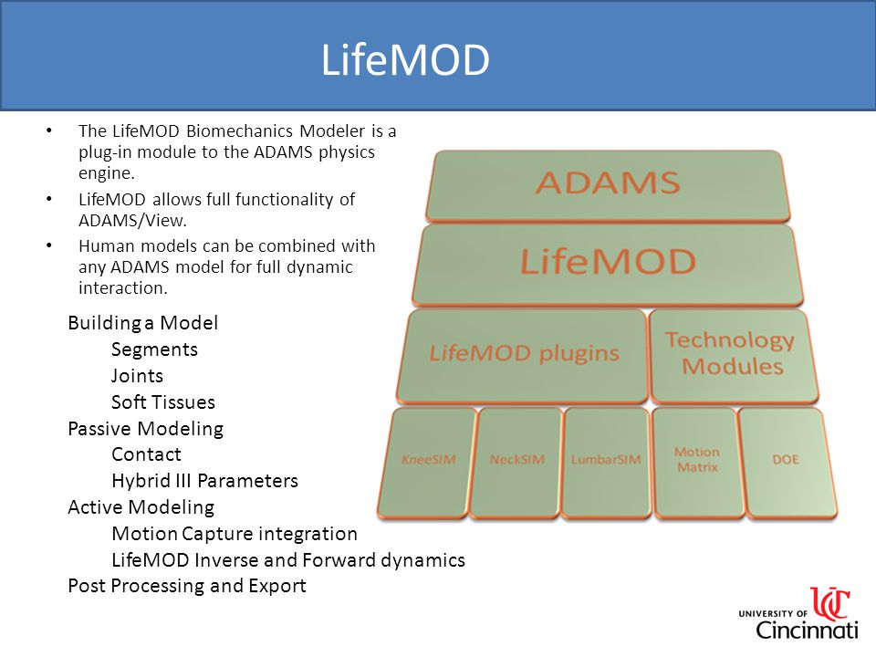 LifeMOD Building a Model Segments Joints Soft Tissues Passive Modeling Contact Hybrid III Parameters Active Modeling Motion Capture integration LifeMOD Inverse and Forward dynamics Post Processing and Export The LifeMOD Biomechanics Modeler is a plug-in module to the ADAMS physics engine.
