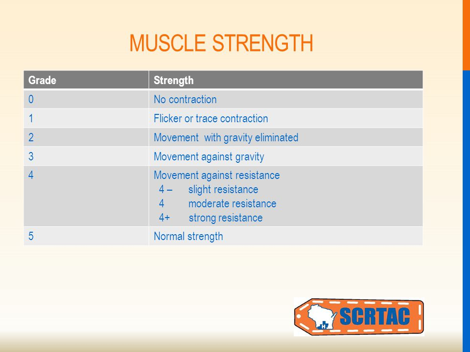 MUSCLE STRENGTH GradeStrength 0No contraction 1Flicker or trace contraction 2Movement with gravity eliminated 3Movement against gravity 4Movement against resistance 4 – slight resistance 4 moderate resistance 4+ strong resistance 5Normal strength