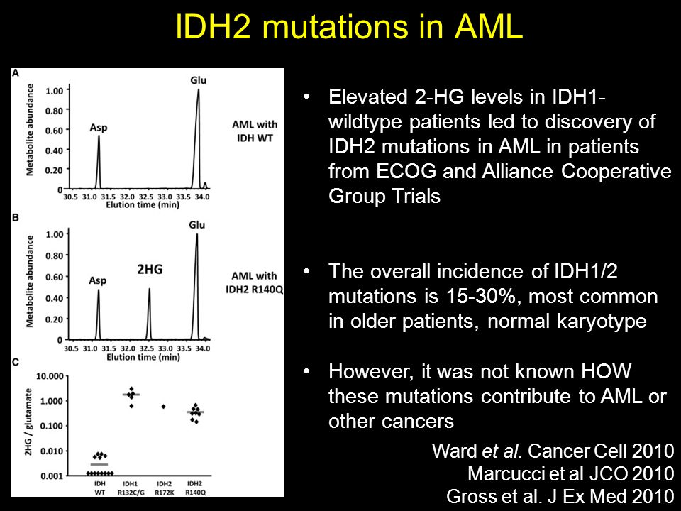 IDH2 mutations in AML Ward et al. Cancer Cell 2010 Marcucci et al JCO 2010 Gross et al. J Ex Med 2010 Elevated 2-HG levels in IDH1- wildtype patients